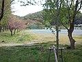 Sakurabuchi-Kôen Park - Playing field.jpg