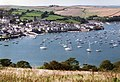 Salcombe, from East Portlemouth - geograph.org.uk - 41113.jpg