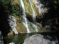 Salmon Creek Falls (1).jpg
