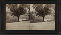 Scenes at West Point and vicinity, by Pach, G. W. (Gustavus W.), 1845-1904 25.png