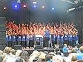 Schlierefäscht 2019 Hofi-Chor (2).jpg