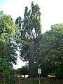 Schoene Eiche Harreshausen2.jpg