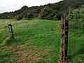 Scoveston fort, old ironmongery - geograph.org.uk - 1431635.jpg