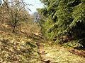 Sentier (54).jpg