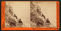 Shags on their nests, Farallone Isl's, Pacific Ocean, from Robert N. Dennis collection of stereoscopic views.png