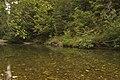 Shoals on the Winchuck River, Rogue River Siskiyou National Forest (23826049072).jpg