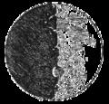 Sidereus nuncius figura03.png