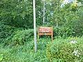 Signy-l'Abbaye (Ardennes) Petite Forêt.JPG