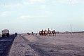 Silk Road 1992 (4368341478).jpg