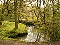 Silkstone Beck - geograph.org.uk - 402657.jpg