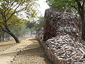 Siri Fort wall at Panchsheel Park2.jpg