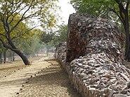 Siri Fort wall at Panchsheel Park2