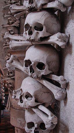 [Image: 255px-Skeletal_Arrangements%2C_Sedlec_Os...433%29.jpg]