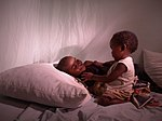 Sleeping safely in Madagascar (8329688301).jpg