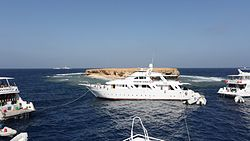 Small Brother island in the Red Sea surrounded by dive safari boats.JPG