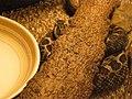 Snake - Eastern Massasauga PA160295.jpg