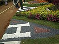 Snap from Lalbagh Flower Show Aug 2013 8365.JPG