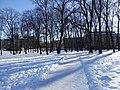 Snow in Slottsparken 02.jpg