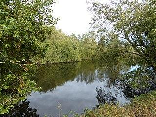 Norfolk Wildlife Trust UK wildlife trust