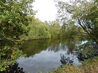 Norfolk Wildlife Trust - Image: Sparham Pools 3