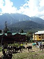 Srinagar - Pahalgam views 48.JPG