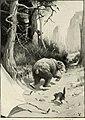 St. Nicholas (serial) (1873) (14760616136).jpg