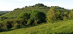 St Catherines Hill from Twyford Down - geograph.org.uk - 180531.jpg