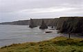 Stacks, Around Duncansby Head, Scotland - panoramio.jpg