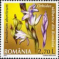 Stamps of Romania, 2007-022.jpg
