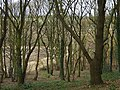 Stapleford Hill - geograph.org.uk - 622270.jpg