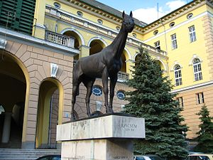 Kincsem Park - Image: Statue of Kincsem