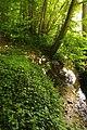 Steenbergse bossen 24.jpg