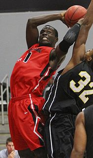 Stephen Maxwell (basketball) American basketball player