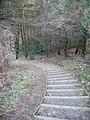 Steps on the Coed Wylfa permissive path - geograph.org.uk - 1176396.jpg