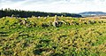 Stone circle near Knock Wood - geograph.org.uk - 595465.jpg