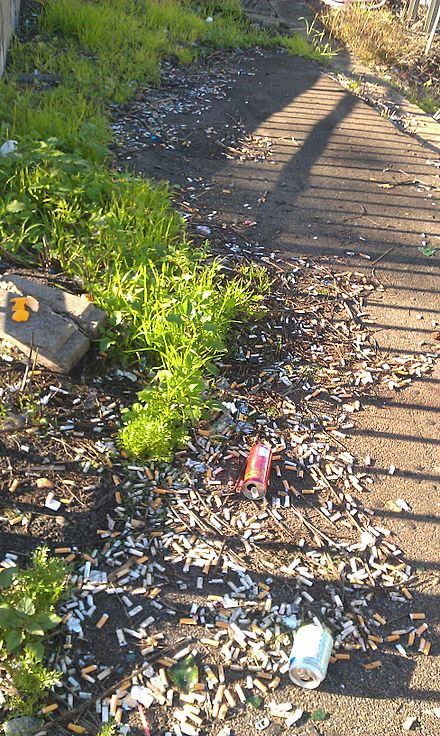 Platform of Strathfield station in Sydney, Australia. Rubbish accumulated over months, perhaps years due to unsustained periods of frequent cleaning Strathfield Platform condition(2).jpg