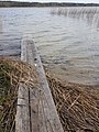 Strusta Lake 3.jpg