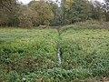 Stukenbrock-wehrbach01.jpg