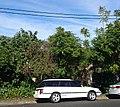 Subaru Liberty wagon (24350052497).jpg