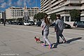 Sunday walk (39516468190).jpg