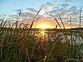 Sunrise on Rodman Reservoir.jpg