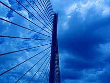 Sunshine Skyway Bridge - Looking Up.JPG