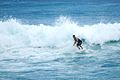 Surfing during the South swell (8933636858).jpg