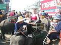 Surin elephants 07.jpg