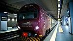TAF Malpensa Express staz Malpensa.jpg