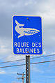 Tadoussac - Whale road sign.jpg