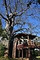 Tarangire Treetops Lodge (28715784605).jpg