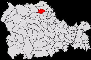 Târgu Neamț Town in Neamț, Romania