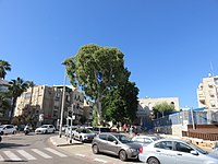 Tel Aviv, Israel - 2018-11-02 - IMG 1916.jpg