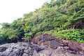 Thailand - Volcanic magma and rainforest on the island Koh Chang.jpg